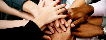 carers-link-multicultural-policies-acceptance